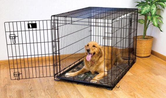dog crate mat