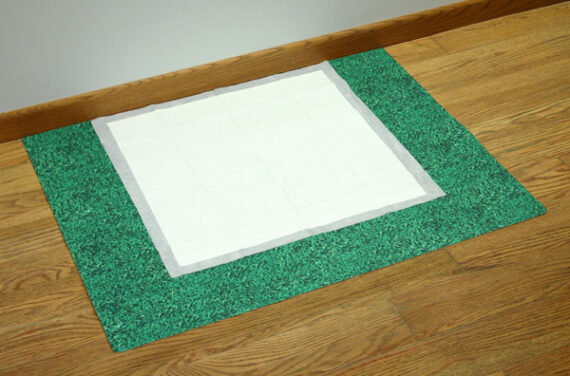 Potty training mat
